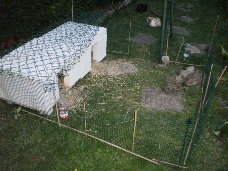 Comment construire clapier la r ponse est sur - Clapier lapin beton ...